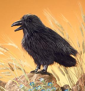 Folkmanis Raven